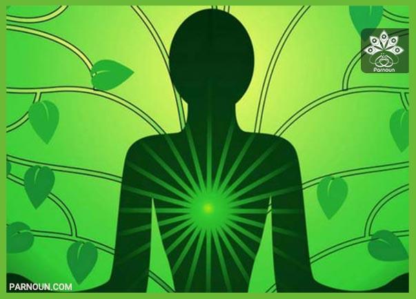 تأثیر رنگ سبز در شخصیت افراد